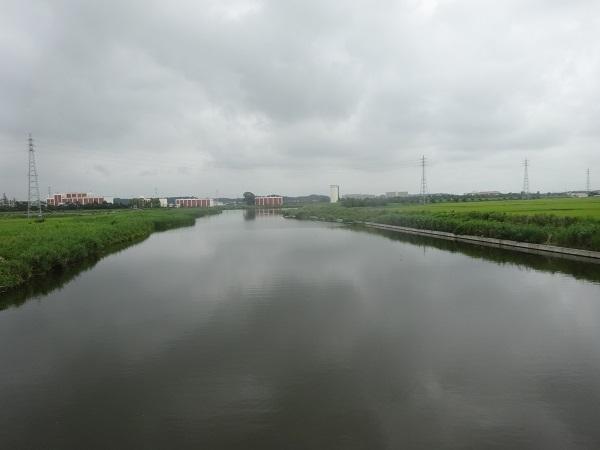 20170805印旛沼周辺 (1)