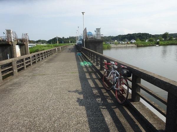 20170805印旛沼周辺 (18)
