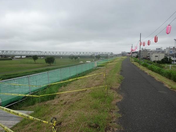 20170811利根川 (5)