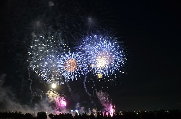 20170812取手花火 (2)
