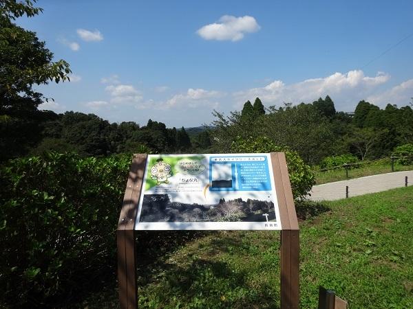 20170909野見金山公園② (7)
