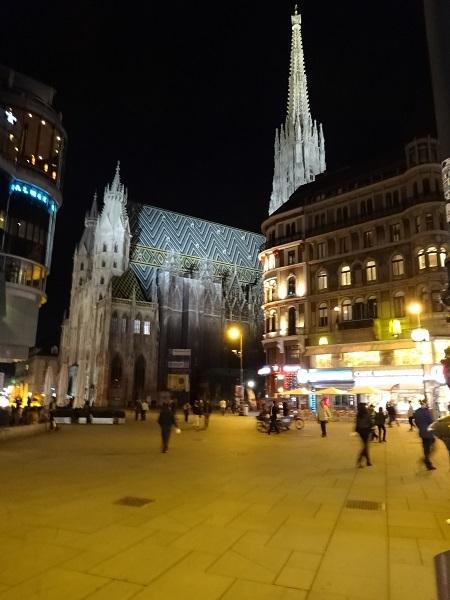 2014欧州ウィーンの夜 (9)