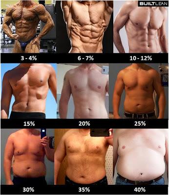 脂肪率画像3cutcut