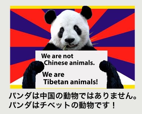 私たちはチベットの動物です500