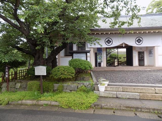 松前城2017.07.03A