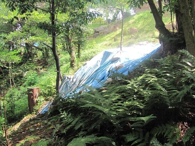 小牧山発掘調査2017.8.27I