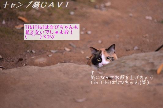 170509_9089.jpg