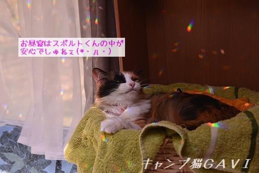 170520_0049.jpg