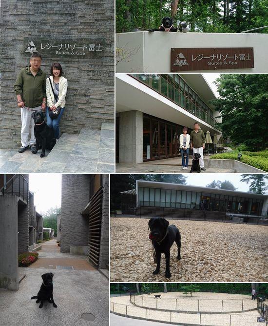 20170614 DSC_6134 レジーナリゾート富士