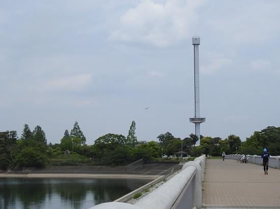 DSCN4076.jpg
