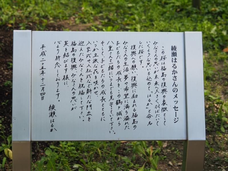 aizu_0025f.jpg