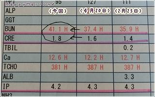 腎機能検査6月3