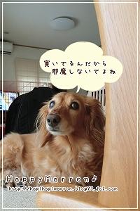 エアコンの風3