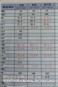 血液検査結果8月31日1