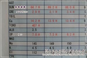 血液検査結果8月31日2