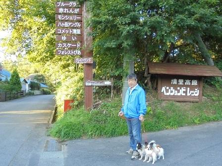 7a,朝の散歩