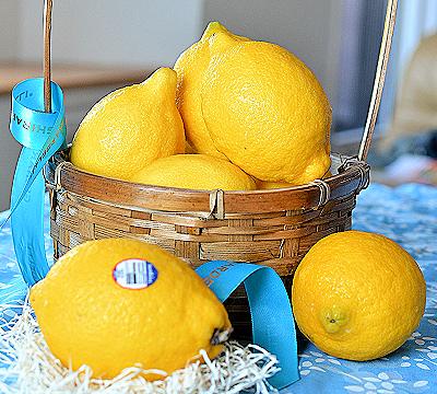 レモン10sinn