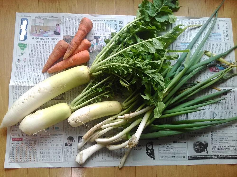 20161120野菜.jpg