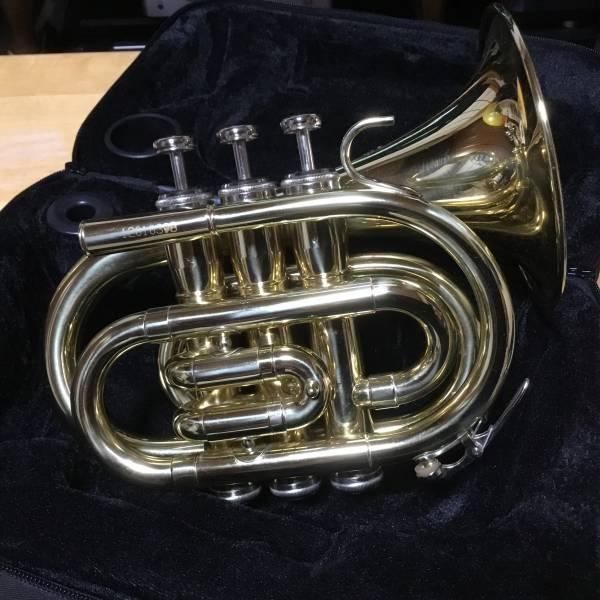 Bach PT100 001