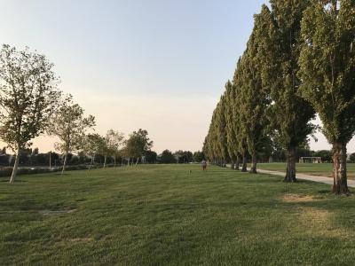 Californiaの公園2