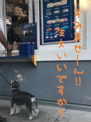 犬用クッキー1