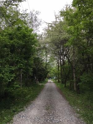 原村の散歩道