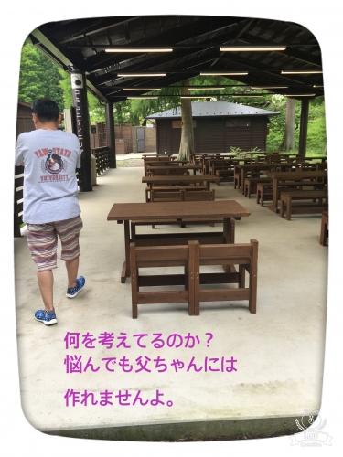 20170704185133f7b.jpg