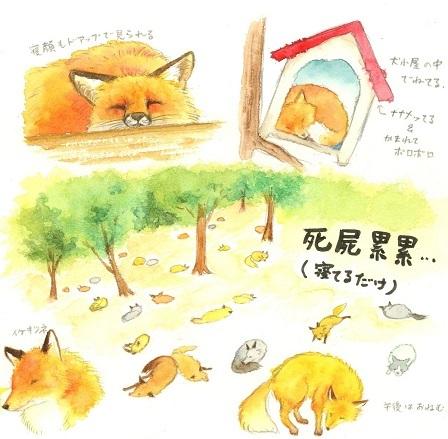 狐村レポ1