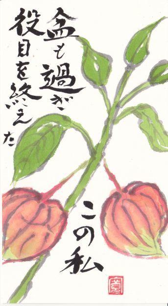 751-17-823ほおづき