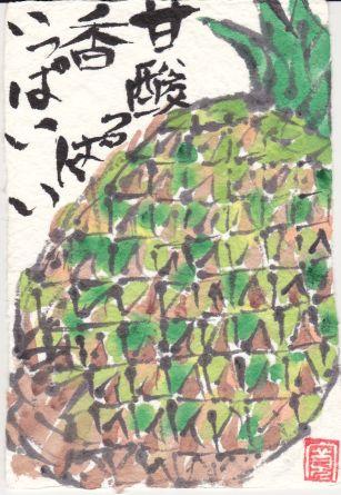 761-17-91パイナップル