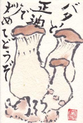 759-17-91-エリンギ