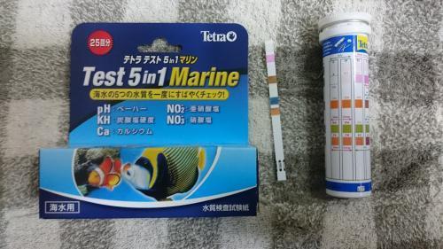 水質チェック(20cm)