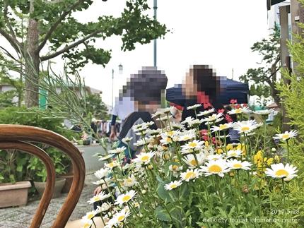 「ぷろばんす56朝市マルシェ」イベントリポート! [平成29年5月28日(日)更新]10