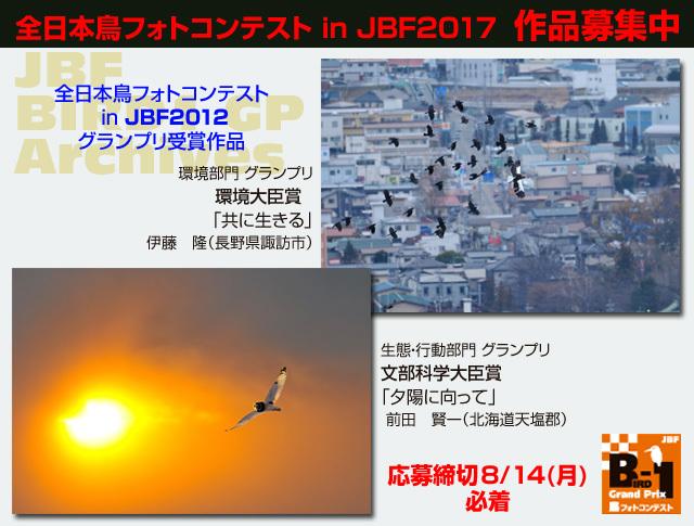 B1_12GPweb_s17.jpg