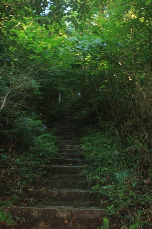 鴻ノ峯登山道