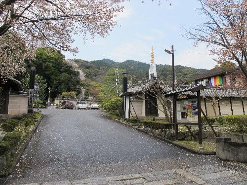 三井寺 (165)