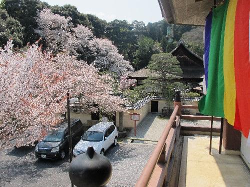 三井寺 (168)