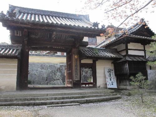三井寺 (173)