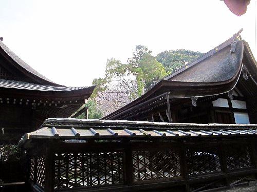 三井寺 (196)