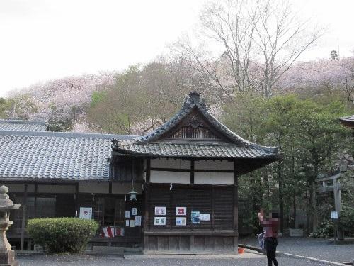 三井寺 (199)