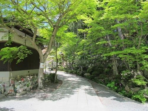 湖南山寺 (85)