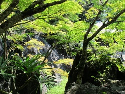 石山笠取 (88)