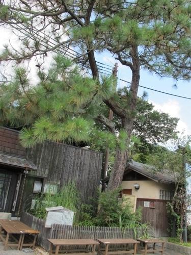 石山笠取 (143)