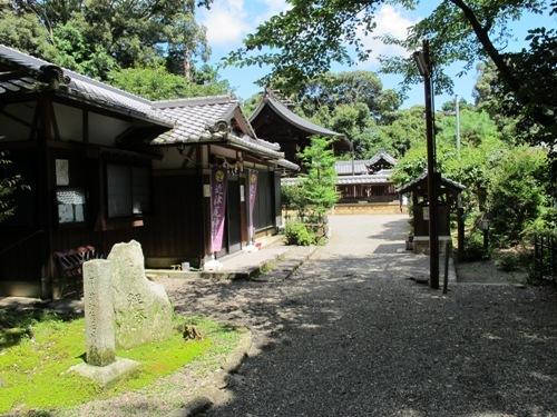 石山笠取 (164)
