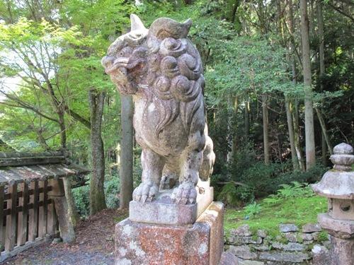 石山笠取 (226)