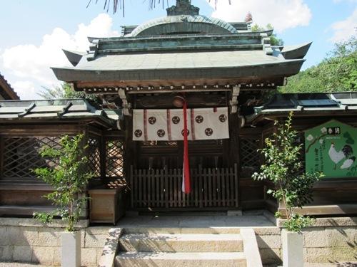 石山笠取 (262)