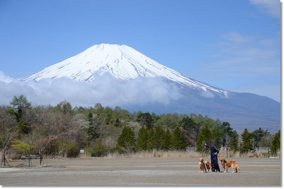 DSC_4373富士山綺麗