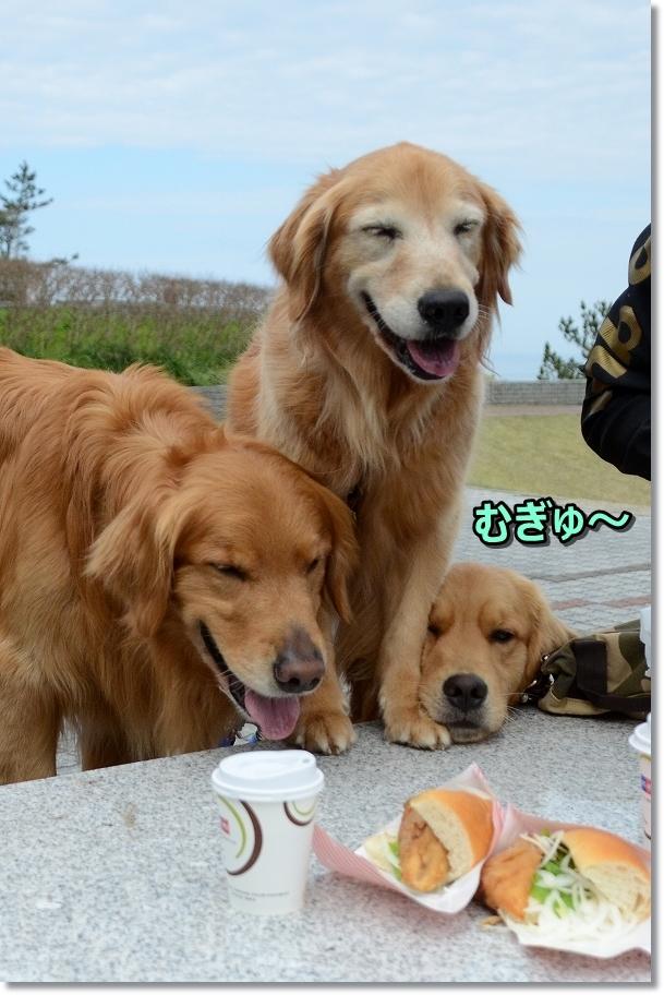 DSC_4538食べる!食べる