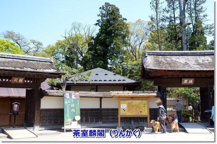 DSC_4609茶室麟閣(りんかく)