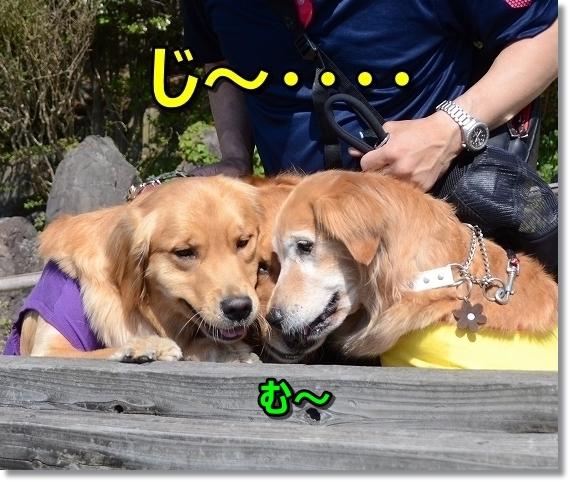 DSC_4675じ~・・・